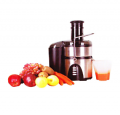 The juice extractor.